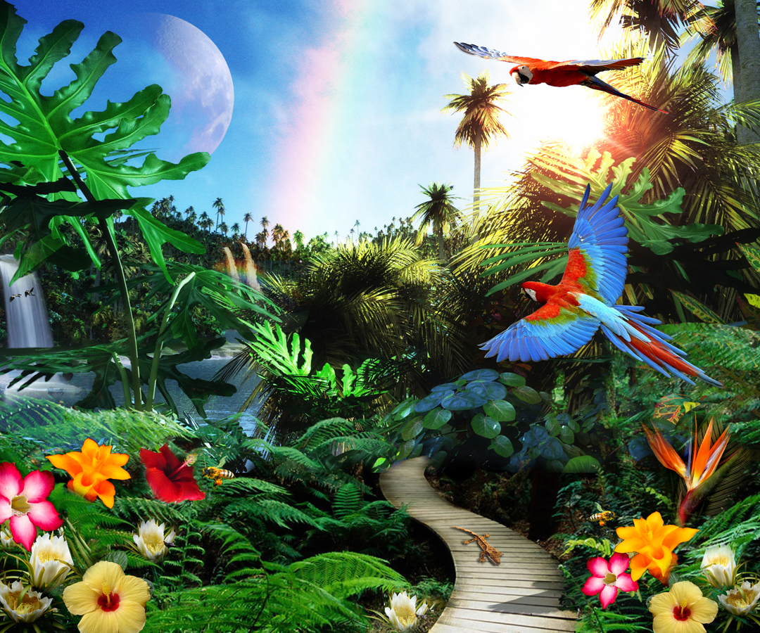 Tropical Jungle Collage Create The Effect
